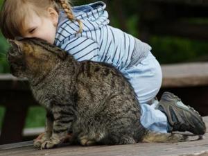 Контакт с животным - причина токсокароза