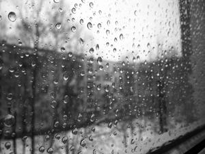 Плохая погода - противопоказание к прогулкам