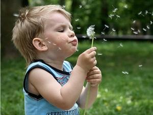 Аллергия - причина изменения формулы крови