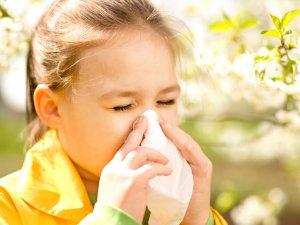 Аллергия как причина бронхоспазма