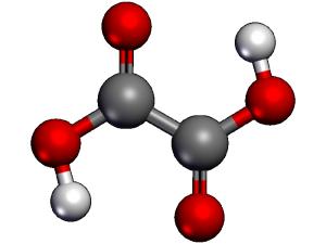 Появление оксалатов при большом колическве щавелевой кислоты в пище