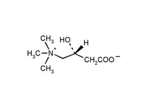 Химическая структура L-карнитина