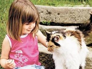 Заражение микроспорией через контакт с животными