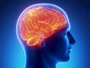 Заболевания мозга - причина рвоты у ребенка