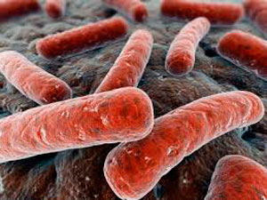 Лечение инфекций ротовых полостей с помощью препарата
