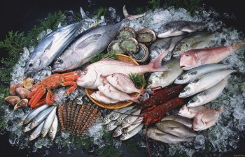 Наличие лецитина в рыбе