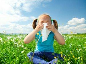 Повышенный уровень иммуноглобулина при аллергическом рините