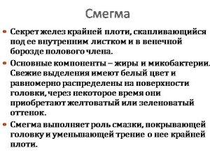 Определение смегмы