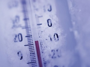 Стойкость вируса к низким температурам